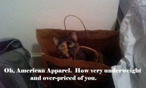 American Apparel Bag